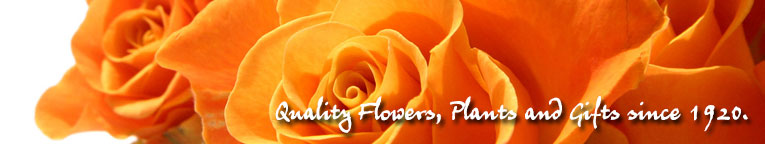 Florist in Ashland KY delivering fresh flowers, blooming plants and gifts throughout the USA since 1920