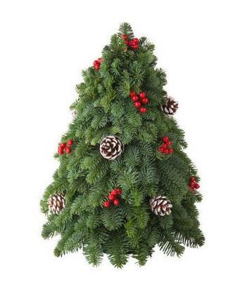 Ashland Christmas Trees.Christmas Tree Centerpiece
