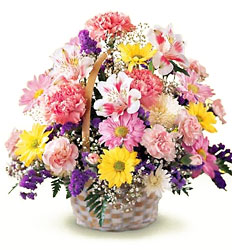 FTD Basket of Cheer from Fields Flowers in Ashland, KY