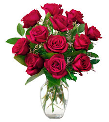 12 Red Roses from Fields Flowers in Ashland, KY