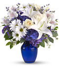 Beautiful in Blue from Fields Flowers in Ashland, KY