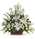 Peaceful White Lilies Basket from Fields Flowers in Ashland, KY