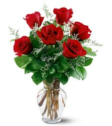 6 Red Roses from Fields Flowers in Ashland, KY