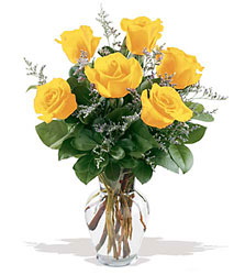6 Yellow Roses from Fields Flowers in Ashland, KY