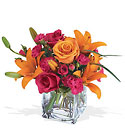 Teleflora's Uniquely Chic Bouquet from Fields Flowers in Ashland, KY