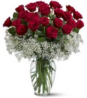 Two Dozen Red Roses from Fields Flowers in Ashland, KY